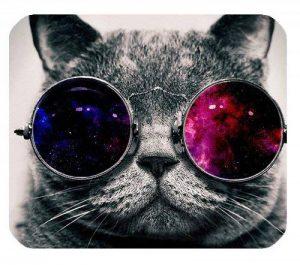 COOL Cat avec verres papier peint personnalisé rectangle en caoutchouc antidérapant Tapis de souris de la marque EnjoyU image 0 produit