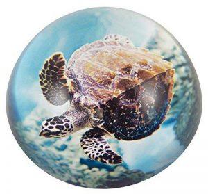 Générique 3501 Presse Papier Tortue Marine dans Écrin Verre Multicolore 8 x 4 x 8 cm de la marque Générique image 0 produit