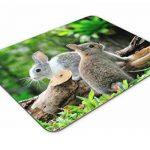 Mignon Lapin Lapins Tapis de souris–Lapin Animal enfants Cadeau amusant PC Computer # 8284 de la marque Destination Vinyl Ltd image 2 produit