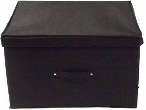 Neusu Boîte De Rangement Pliable, Géant 60 Litres 50x40x30cm, Lot de 1 Noir de la marque Neusu image 0 produit